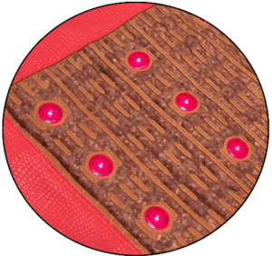 healthy wave mat photo therapy red light therapy